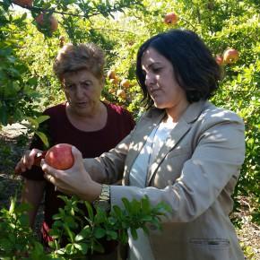 Ciudadanos Elche presente en el acto conmemorativo del Día de la Mujer Rural