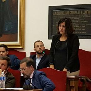 El Pleno del Ayuntamiento de Elche aprueba por unanimidad las dos mociones presentadas por Ciudadanos