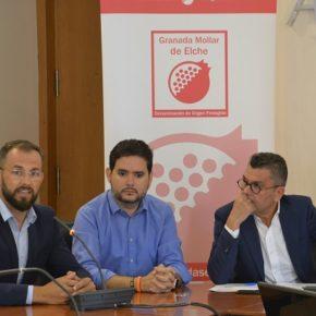 El Ayuntamiento concede a la D.O. de la Granada Mollar la subvención de 30.000 euros a petición de Ciudadanos Elche